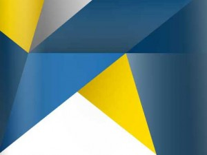 Annual Report – 2010