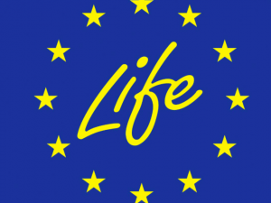LIFE Info Day – 8th May
