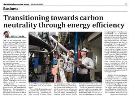 Transitioning towards carbon neutrality through energy efficiency