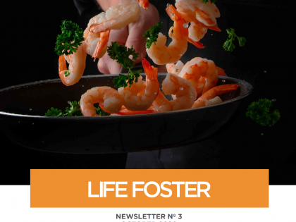 LIFE FOSTER Newsletter No. 3